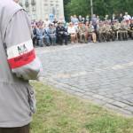 Święto Błękitnej Armii. Fotorelacja Grzegorza Boguszewskiego_108